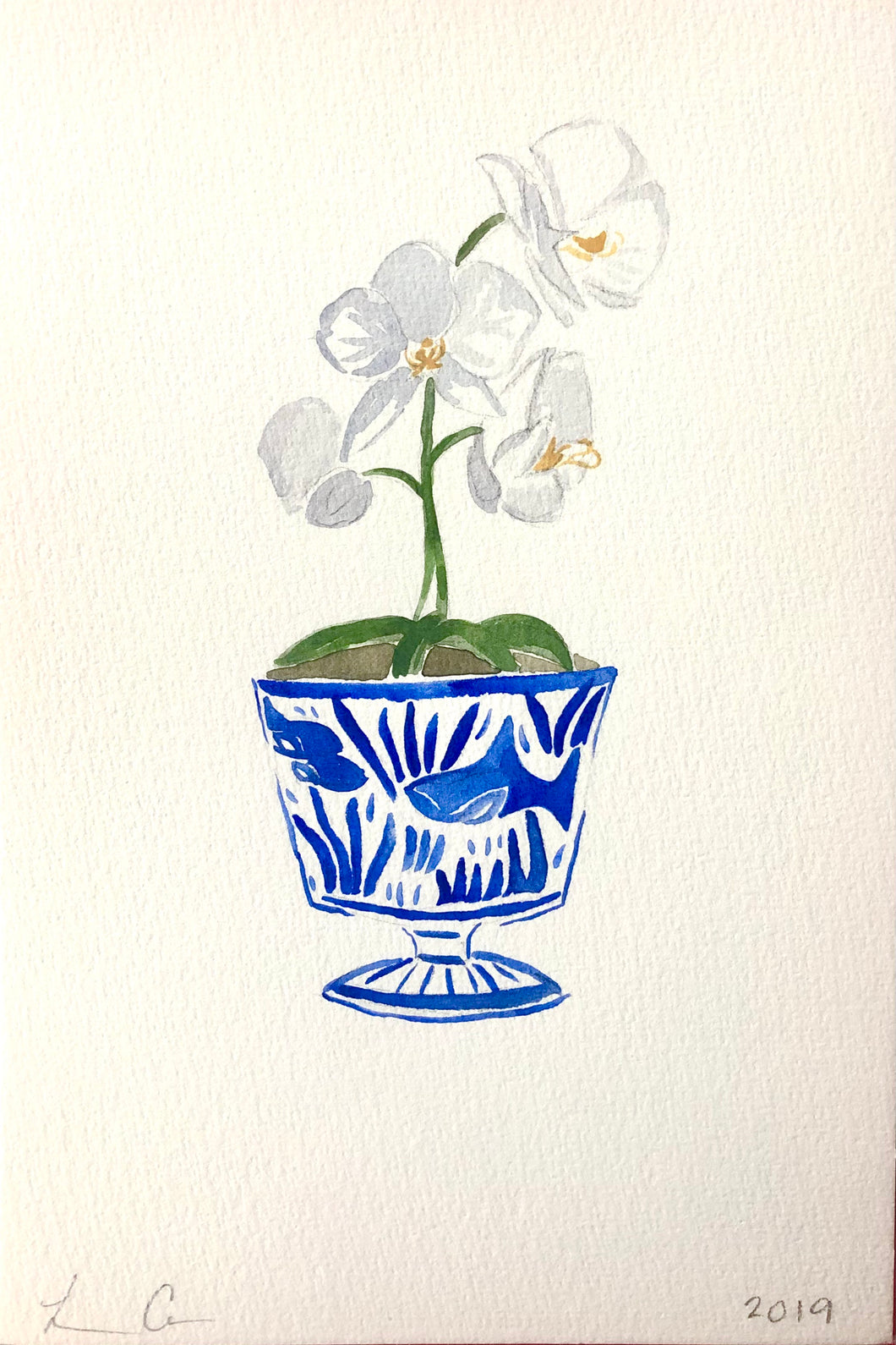 Chinoiserie Orchid