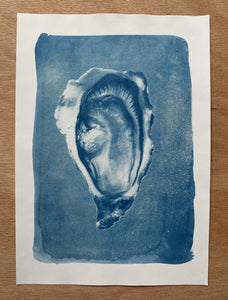 "Photographie cyanotype ""Oyster"" A4"