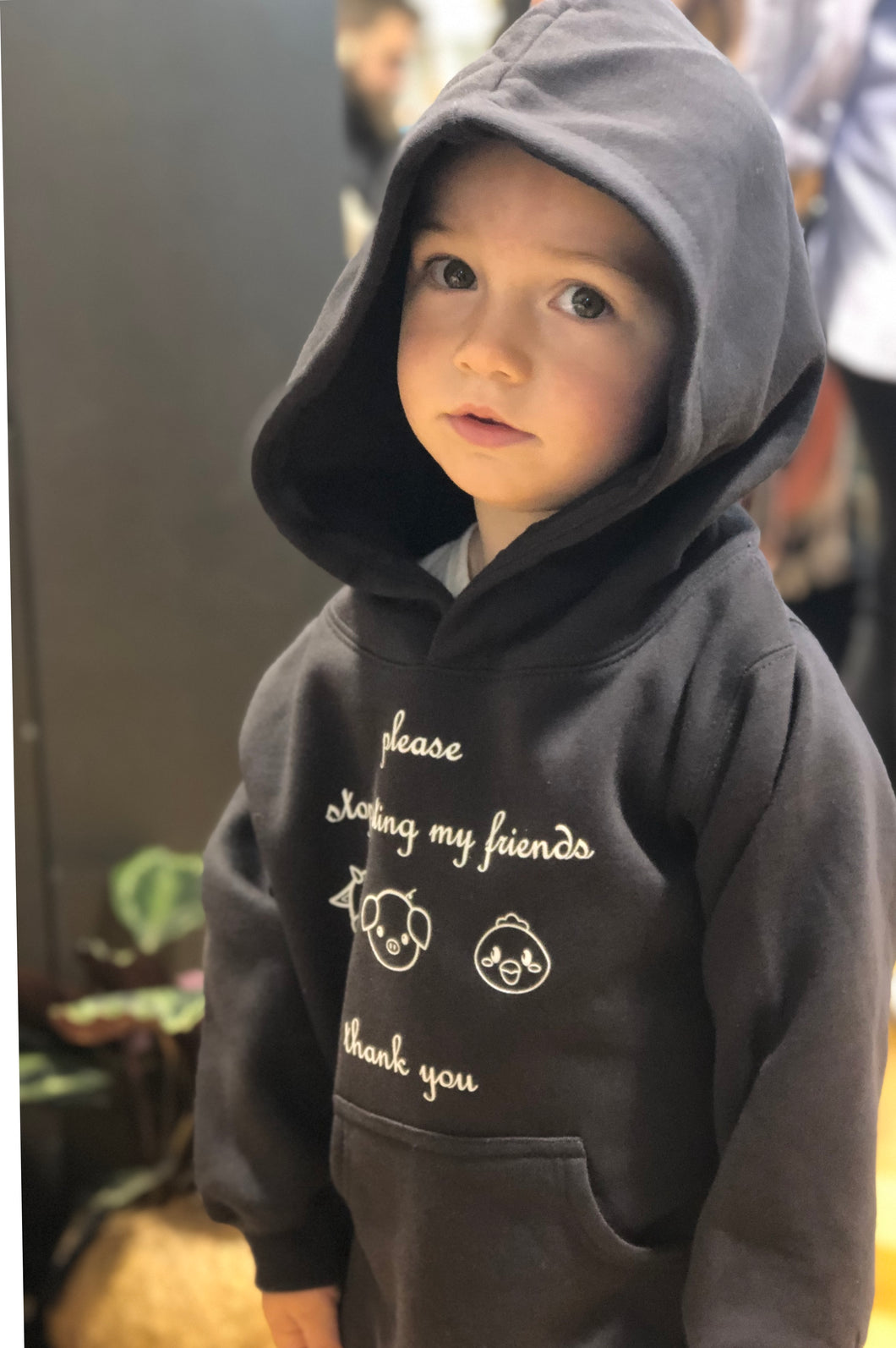 Childrens Hoodies 'please stop eating my friends thankyou '