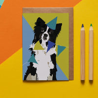 Border Collie Dog Greeting Card By Lorna Syson