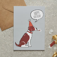 Liver & White Springer Spaniel Happy Birthday Dog Greetings Card By Sweet William