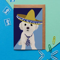Bichon Frise Dog Greeting Card By Lorna Syson