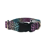 Rainbow Animal Print Dog Collar By Urban Tails