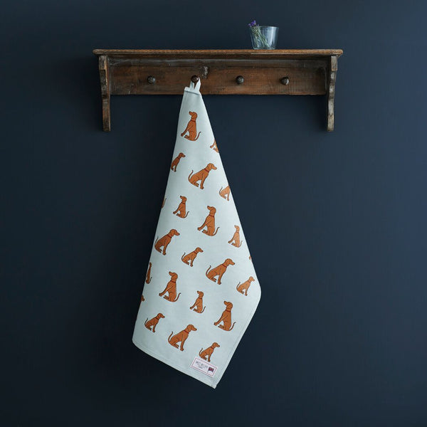 Vizsla Tea Towel By Sweet William