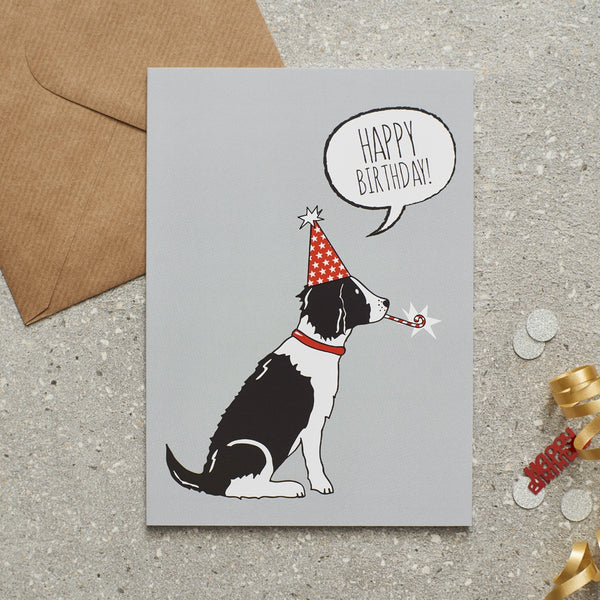 Black & White Springer Spaniel Happy Birthday Dog Greetings Card By Sweet William