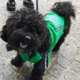 Windbreaker Green Dog Jacket By Urban Pup