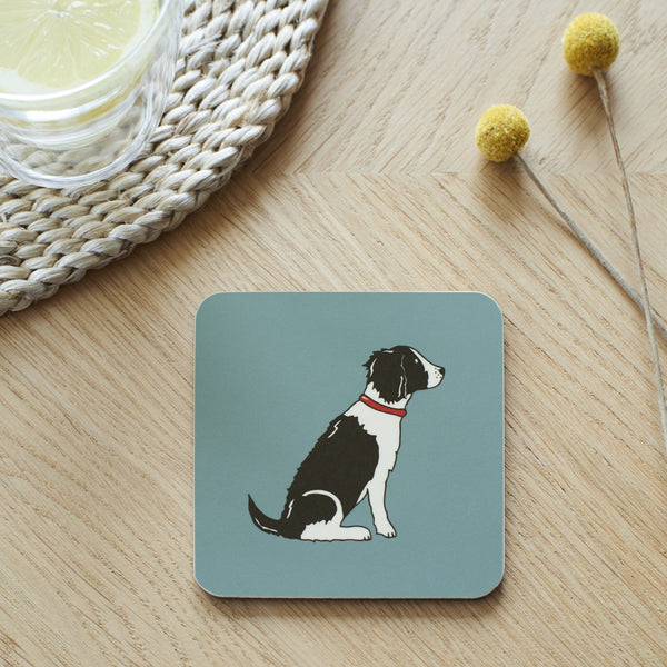 Black & White Springer Spaniel Dog Coaster By Sweet William