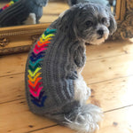 Rainbow Chevron Hand Knitted Dog Jumper By The Distinguished Dog Company