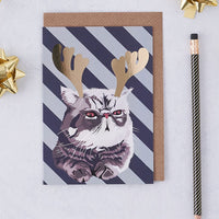 Christmas Cat Greeting Card By Lorna Syson