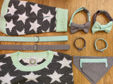Mint Star Pooch Reversible Bandana By Love From Betty X Urban Tails