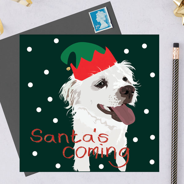 Christmas Marlo Dog Greeting Card By Lorna Syson