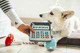 Doggie Digits Calculator Dog Toy by P.L.A.Y