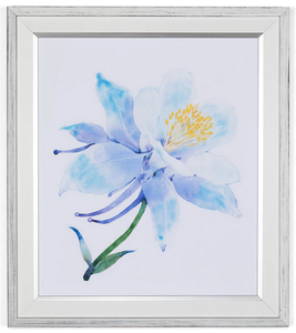 Columbine Floral Framed Art Print
