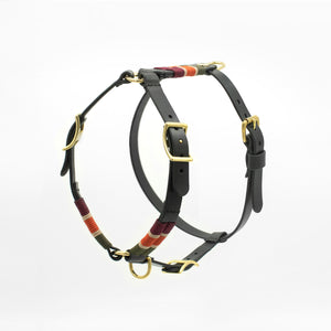 The Maya Bridle - Hundegeschirr