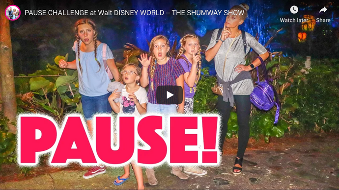 PAUSE CHALLENGE at WALT DISNEY WORLD -- THE SHUMWAY SHOW