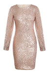 Nude Sequin Tassel Sleeve Bodycon Evening Dress