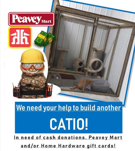 Help us build another Catio!