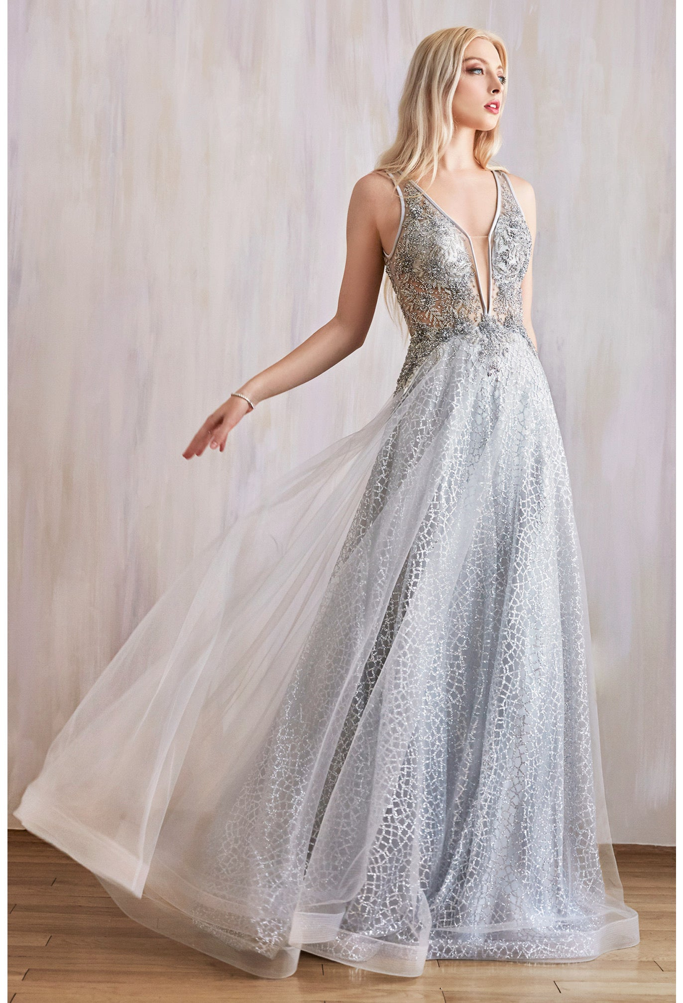 AL Midnight Dream Silver Gown