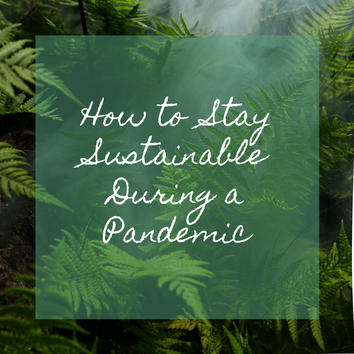 How to Stay Sustainable During a Pandemic