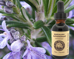 Natural Rosemary Antioxidant - Natural - A Woman Knows Best