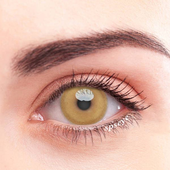 SPSeye Terra Brown Colored Contact Lenses