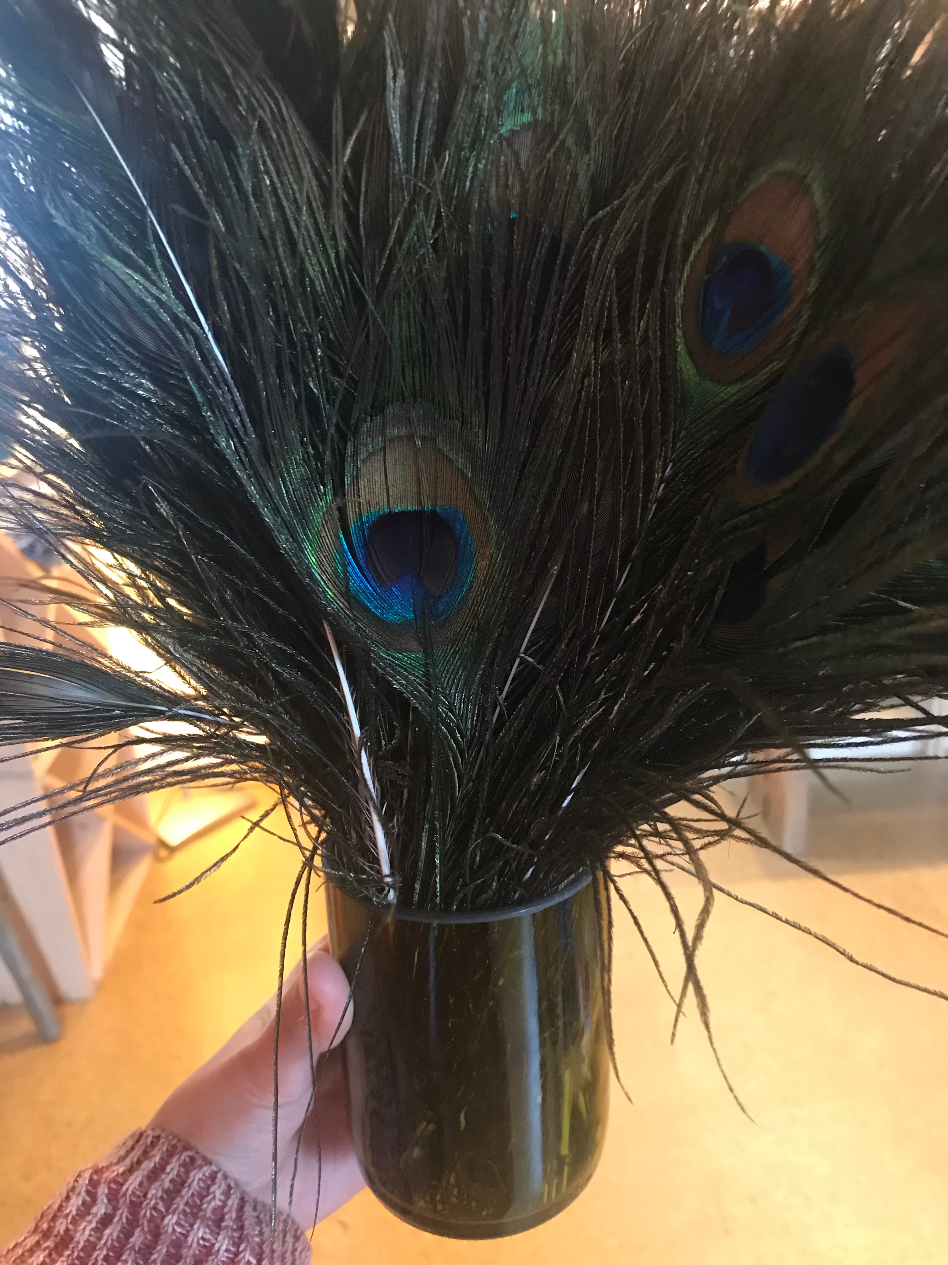 Natural Peacock Tail Eye Feather
