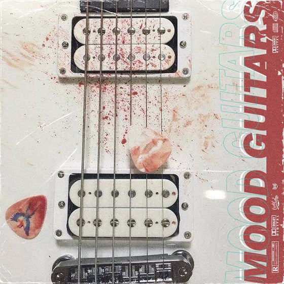 MOOD GUITARS - studiotrapsounds