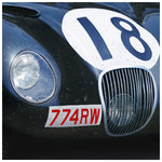 Le Mans Winner C-Type 1953