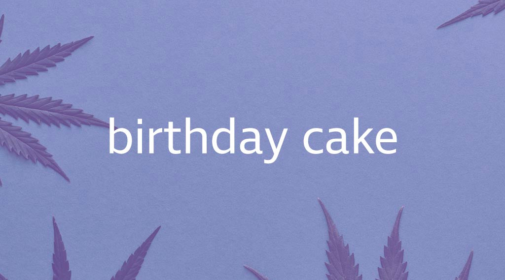 Birthday Cake Strain Review
