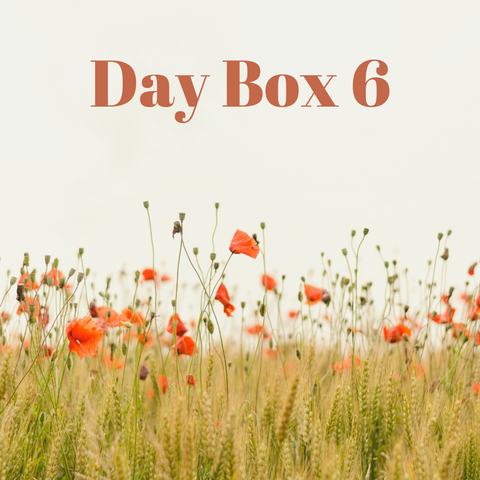 Day Box 6 (Small)