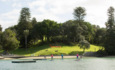 SUP Location Guides - Judges Bay, Auckland