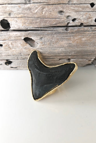 Magalodon (Shark's Tooth) Ring