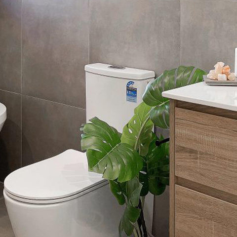 wall faced toilet suite -  Arova