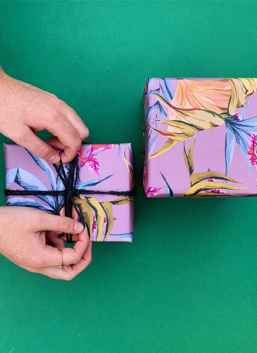 Climbing The Walls Gift Wrap