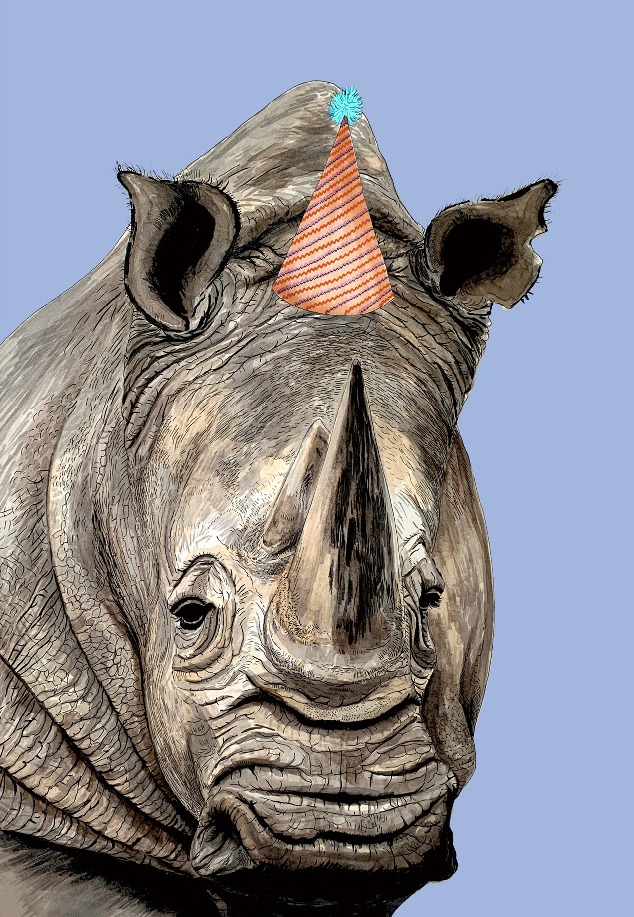 Rhino Party Hat Blue