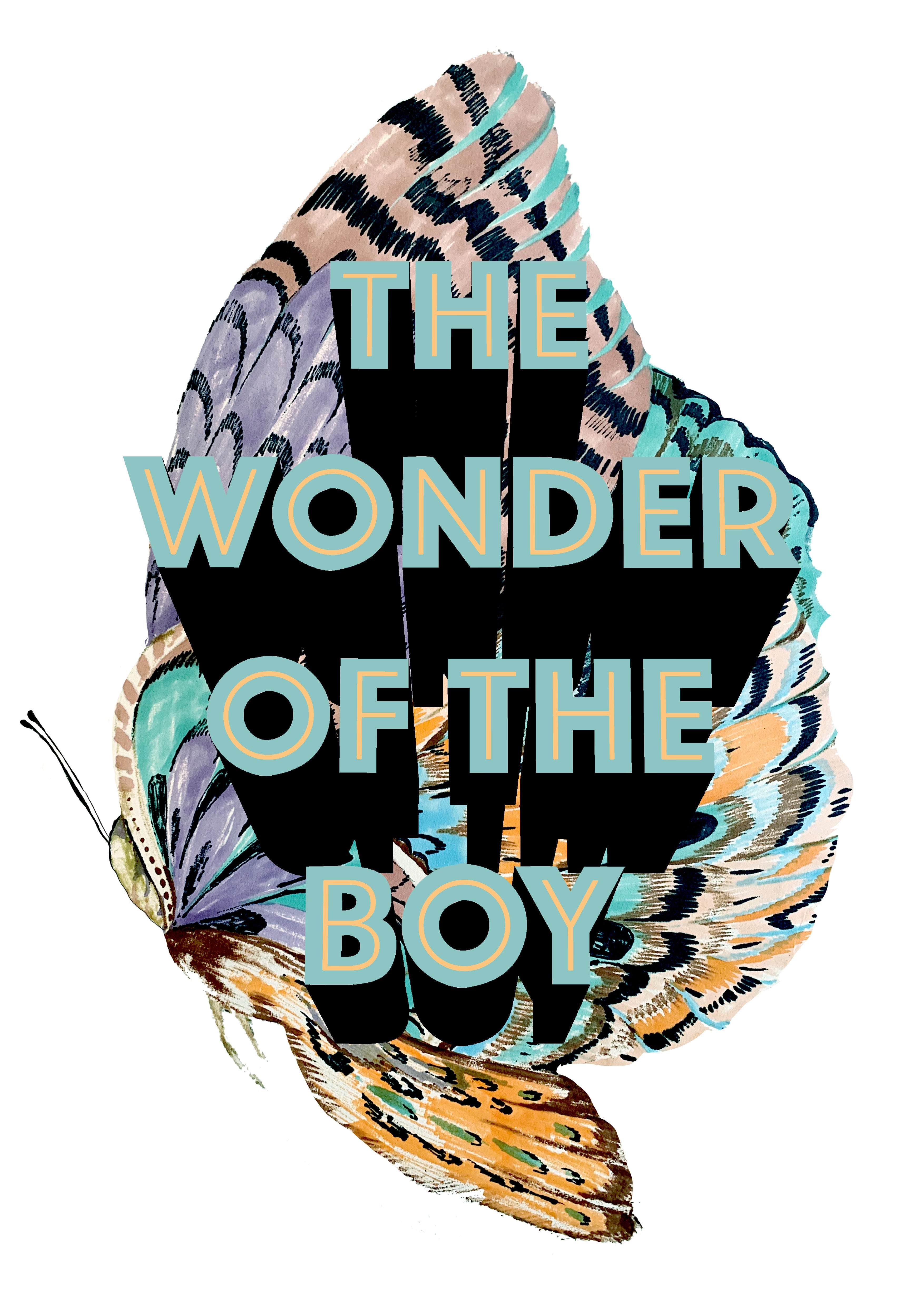 The Wonder Of The Boy