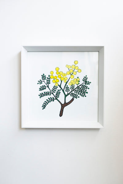 Billie Justice Thomson Limited Edition Framed Print - Wattle