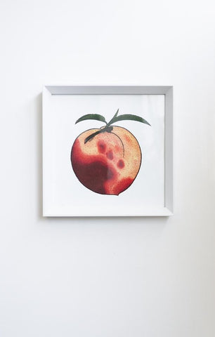 Billie Justice Thomson Limited Edition Framed Print - Peach