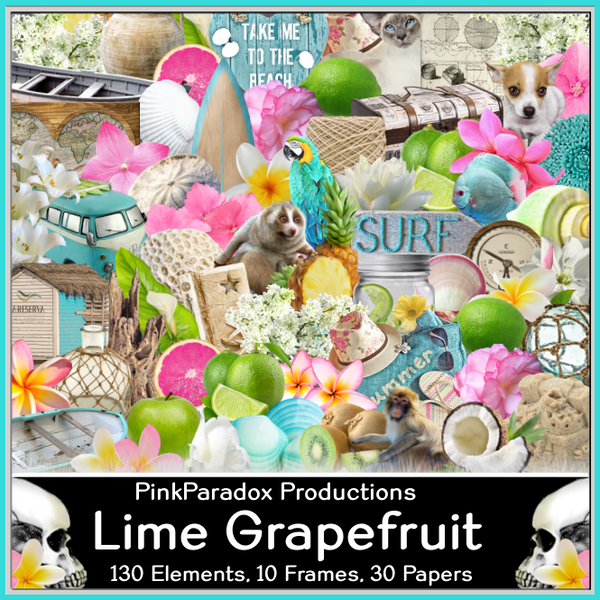 Pink Paradox Lime Grapefruit Scrap Kit