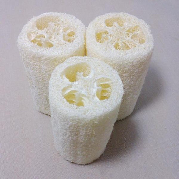 Natural Loofah - 6 Pack 🔥 Hot Sale 🔥