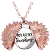 "NEW 🌻""You Are My Sunshine"" Unique Sunflower Necklace"