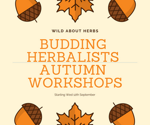 Budding herbalists Autumn Workshops