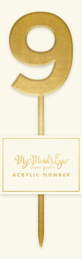 Gold Acrylic Number 9 Cake Topper My Mind's Eye