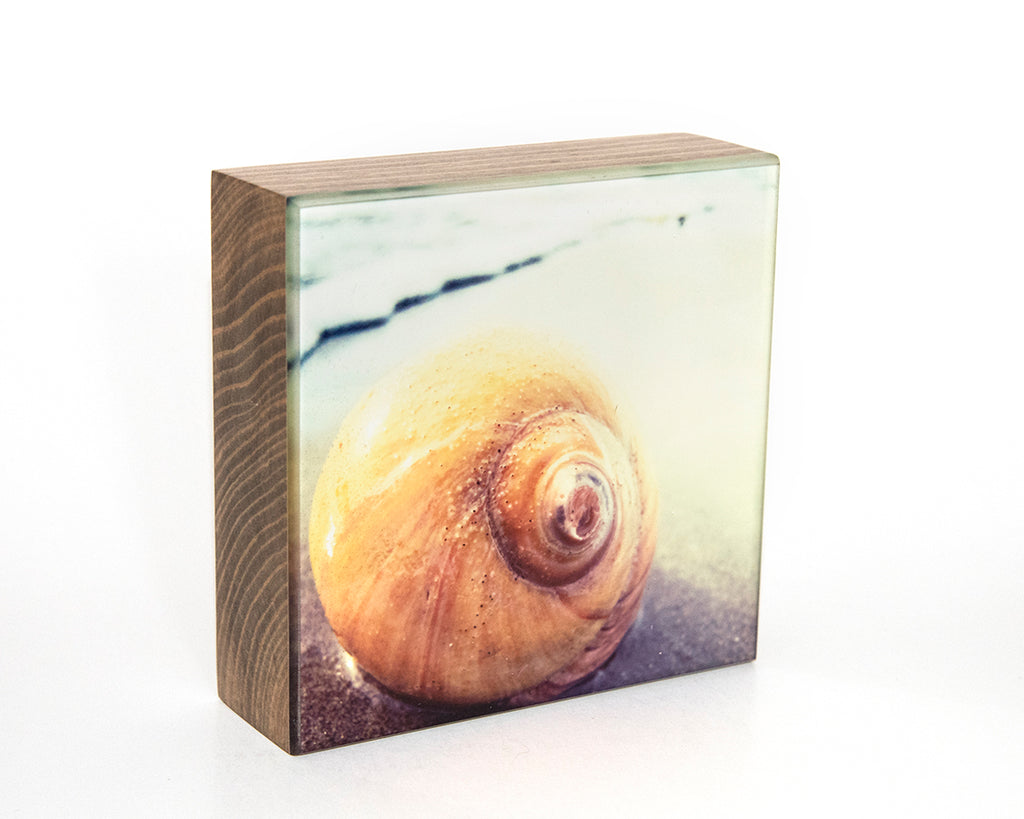 Snail's Eye View 5x5 Photo Block
