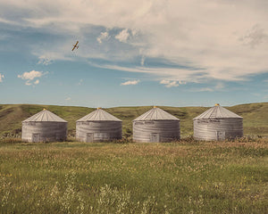 A Group Of Silo's On The Prairie