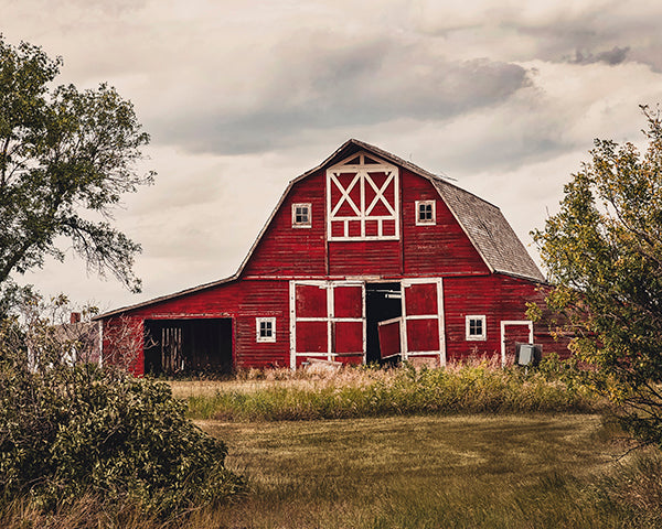 Big Red Barn - 8x10