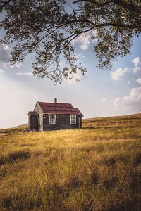 Old Homestead In Rural Saskatchewan