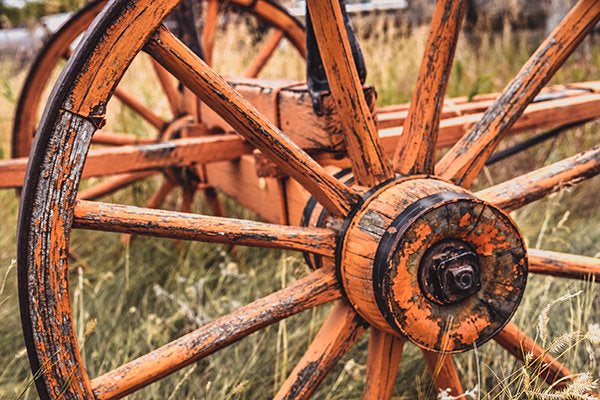 Orange Wagon Wheel