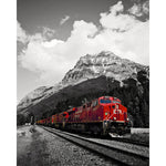 CP Rail Train In Field BC