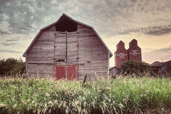 Livery Barn In Rowley Alberta
